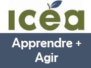 Accéder à la publication en ligne de l'ICÉA