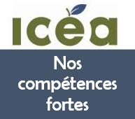 Découvrez l'outil de de reconnaissance des compétences génériques de l'ICÉA