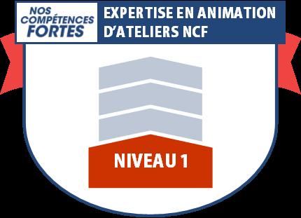 Expertise en animation, badge numérique NCF niveau 1