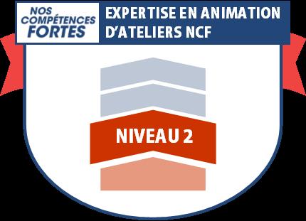 Expertise en animation, badge numérique NCF niveau 2