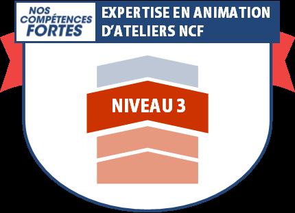 Expertise en animation, badge numérique NCF niveau 3
