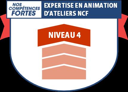 Expertise en animation, badge numérique NCF niveau 4
