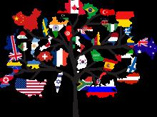 Arbres avec différents drapeaux nationaux